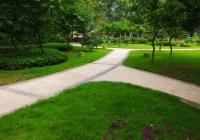 南温泉公园花卉园景观ballbet贝博网址